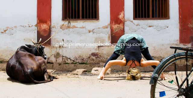 convivenza-yoga-prasarita-padottanasana-with-kid