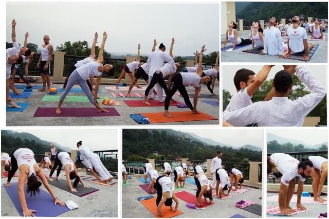 asana-practice-yoga-tattvaa-yogashala-rishikesh-india