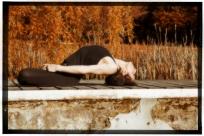 ashtanga-yoga-italia-milano-con-rosa-tagliafierro