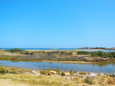 vacanza-Cicladi-theprimerose-Rosa-Tagliafierro-Naxos-0483