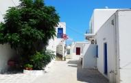 vacanza-Cicladi-theprimerose-Rosa-Tagliafierro-Paros-0763