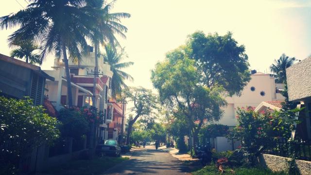 KPJAYI-shala-road-in-Mysore-India