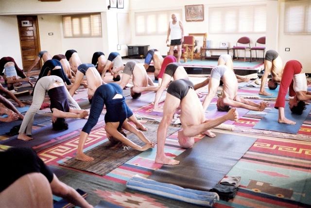ashtanga-classe-guidata-prima-serie-yoga-italia-milano-rosa-tagliafierro